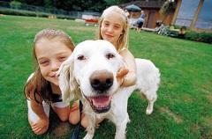 http://cachevalleyfamilymagazine.com/family-dog-secret-health-happiness/